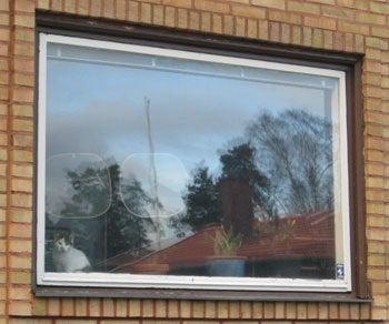 北欧からコンニチワ-窓辺のミッセ