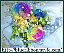 $Blog de Blue Ribbon Style ★ Chihuahua breeds.