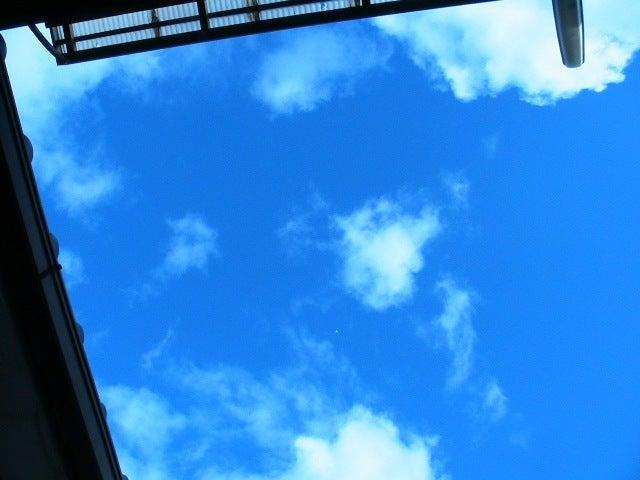 おまけ道@琵琶湖畔で実家生活♪ポテチンっ♪-1127
