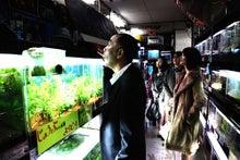 ゆきがめのシネマ、試写と劇場に行こっ!!-熱帯魚4
