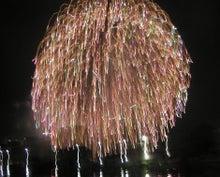 素人のガーデニングと趣味のブログ-花火の残像