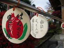 よっしぃ☆のブログ-ザクロ祭り2