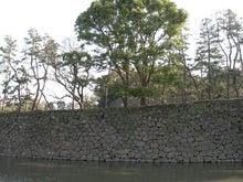 microcosmos B-竹橋4