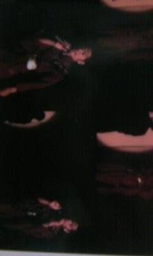 cattakomaさんのブログ-101115_2107~01.JPG