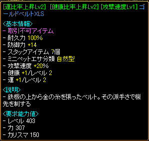 RELI姫のおてんば(?)日記-ベルト