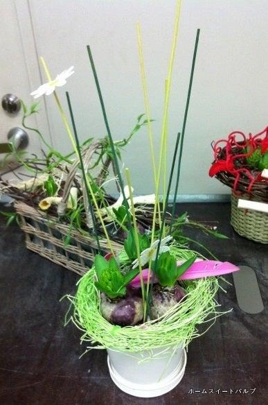 $~球根花で楽しい我が家~ 花芽つき球根を使って早春のインテリアをグレードアップ
