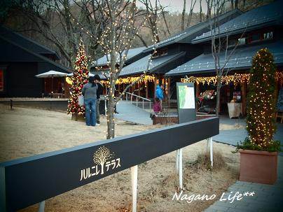 Nagano Life**-ハルニレテラス