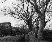 秋田の歩き方 - 秋田市のイベント&観光情報はおまかせ ビビッとチャンネル Akitachi