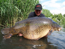 世界の巨大鯉 パート2