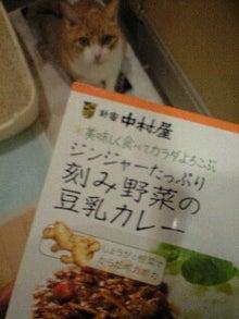 ずれずれブログ…湘南で猫と暮らせば…-101216_1947~0001.jpg