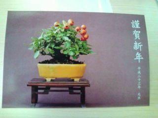 ~ ゆるり木 ~-20101218110909.jpg