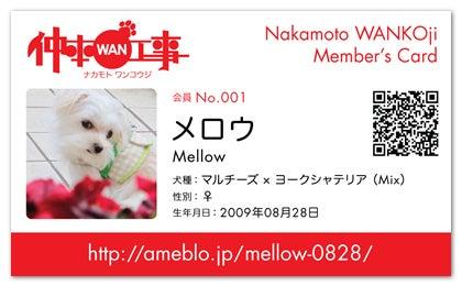 Mellow -メロウ- のベ