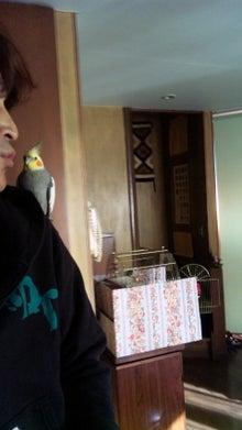 オカメインコのももちゃんと花教室と旅日記-101217_085503.jpg