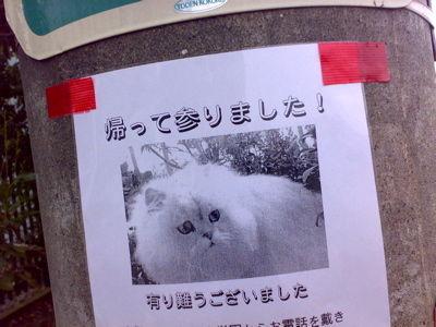 笑える.com-事後報告