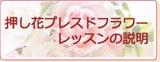押し花&プレスドフラワー