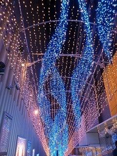 あひるるる-新宿