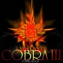 CoCo SHINWA / ココシンワ-12,27-10