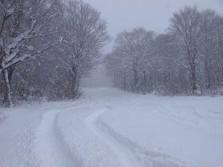 池の平温泉スキー場ゲレンデレポート-10122904