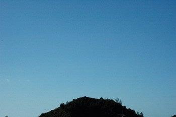 小笠原エコツアー 父島エコツアー         小笠原の旅情報と小笠原の自然を紹介します-大神山