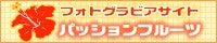 $川崎優 with ZX-10R