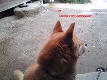 更紗の3LDKアクア-Image251.jpg