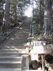 とん☆むす日記-油山
