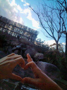 熊田曜子 オフィシャルブログ powered by Ameba-20110103150428.jpg
