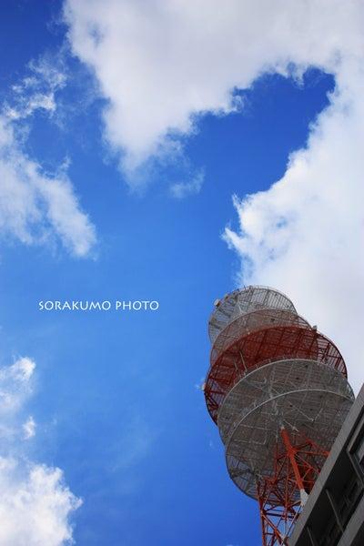 ソラクモ-sorakumo-832