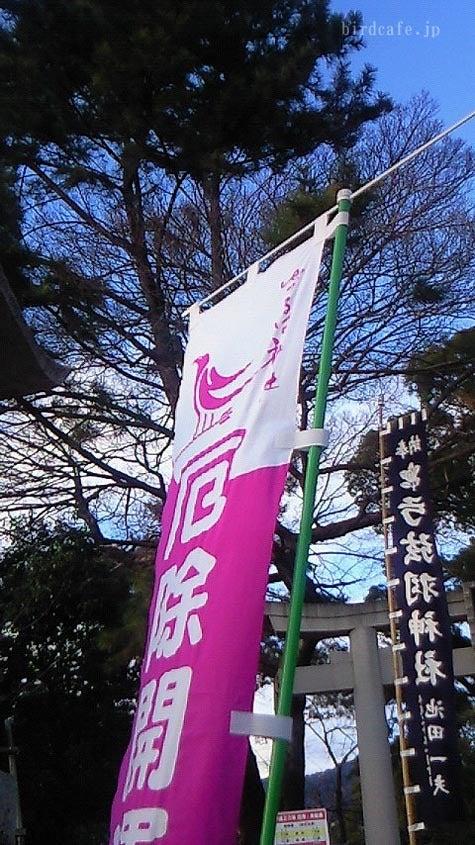 ようこそ!とりみカフェ!!~鳥の写真や鳥カフェでの出来事~-弓弦羽神社にいってきました!