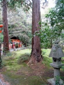 京都嵐山日和-0106