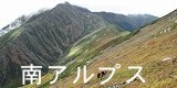タカネビランジ‐高山植物とそこに生きる生物‐-バナー南アルプス