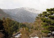 京都嵐山日和-0111_1