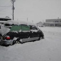 寒いのは当たり前〜だ…
