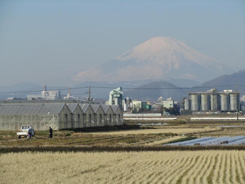 富士山画像 平塚