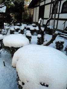 京都嵐山日和-0117_3
