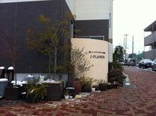 庭とインテリアのデザイン事務所 ジェイプランニングのオフィシャルブログ-大雪 溶けたところ