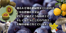 $キレイのさと 美郷 (MISATO)