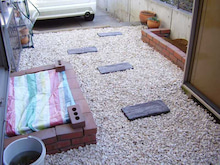 くまこの小さなお庭と趣味のおはなし