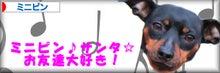 ミニピン♪サンタ☆お友達大好き!