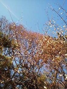 博多ホメホメ新聞-110114_1147~02.jpg