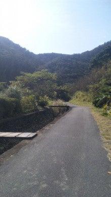 奄美大島(加計呂麻島)~うみがめ隊のブログ~-110123_130849.jpg