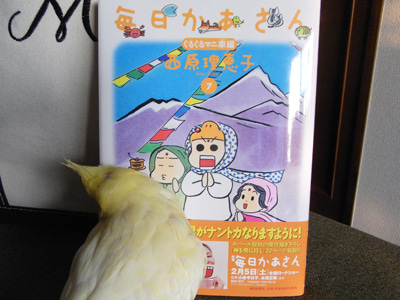 【たんぽぽの惑星】-たんぽぽ012411