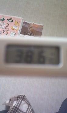 ソイウォッシュ-熱