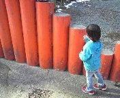 にこにこママのブログ♪-2011012514210000.jpg