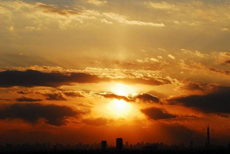 $鎌ケ谷市で躁鬱病が逢魔時に踉きながら見る悪夢