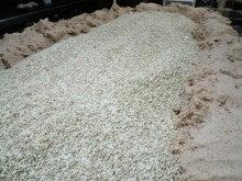 オーベルジュスタッフの高原便り-大豆と麹