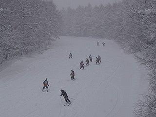 $池の平温泉スキー場ゲレンデレポート-11013003