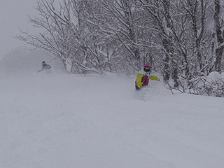$池の平温泉スキー場ゲレンデレポート-11013002