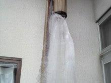 ある教会の牧師室-氷柱