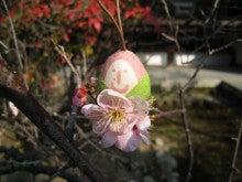 京都嵐山日和-0204